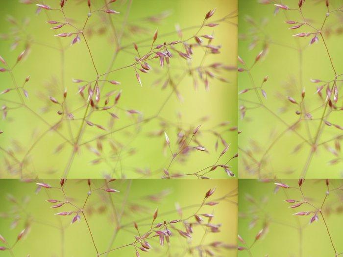 Tapeta Pixerstick Jemný tráva - Květiny