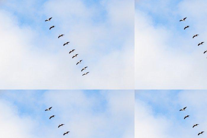 Tapeta Pixerstick Jeřáby - Ptáci