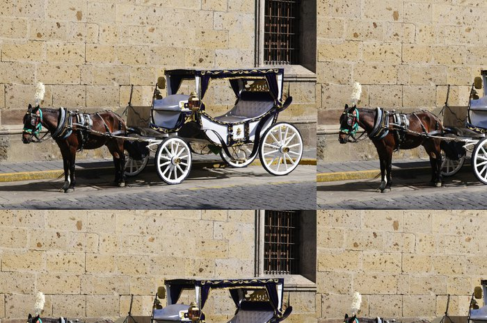 Tapeta Pixerstick Jízda kočárem v Guadalajara, Jalisco, Mexiko - Amerika