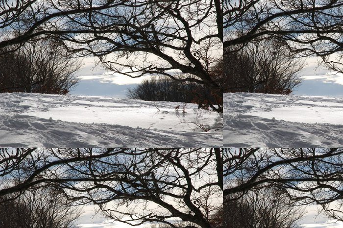 Tapeta Pixerstick K okraji lesa - Hory