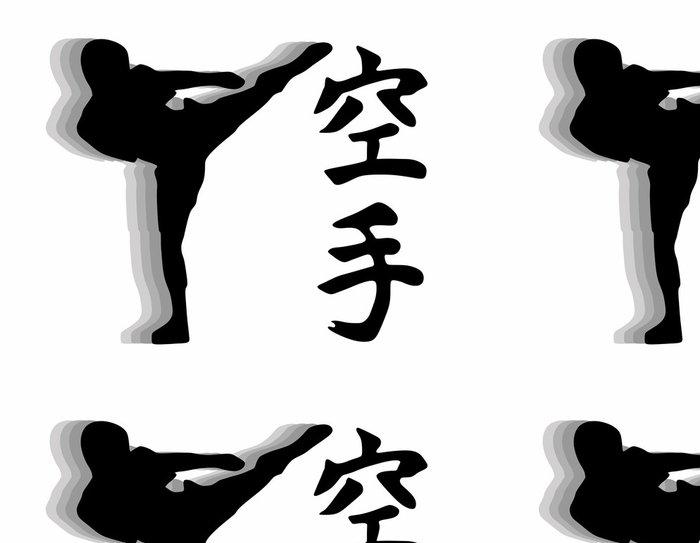 Tapeta Pixerstick Karate bojovník - branku vektor - Extrémní sporty