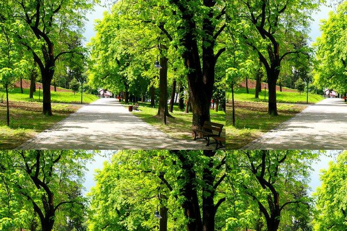 Tapeta Pixerstick Klidném parku na jaře - Město