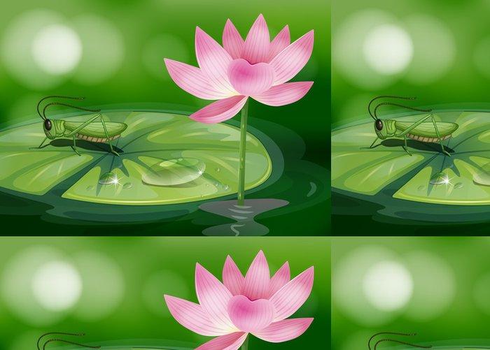 Vinylová Tapeta Kobylka nad leknín vedle růžový květ - Vodní a mořský život