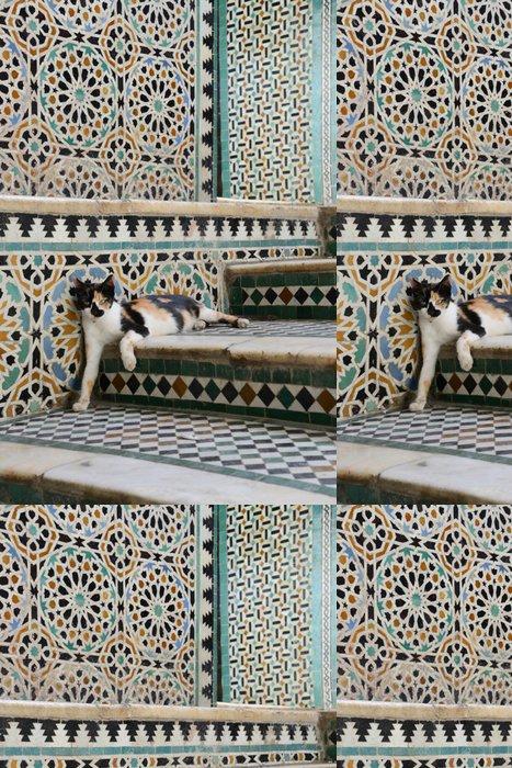 Tapeta Pixerstick Kočka - Maroc - Témata