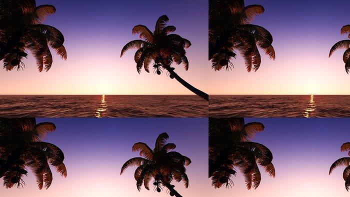Tapeta Pixerstick Kokosové ořechy na pláži - Nebe