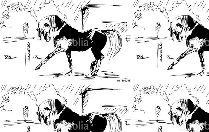 Tapeta Winylowa Koń hiszpanski krok - szkic wektor - Święta międzynarodowe