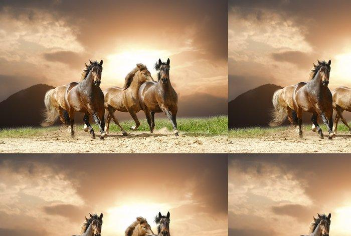 Tapeta Pixerstick Koně běžet - Témata