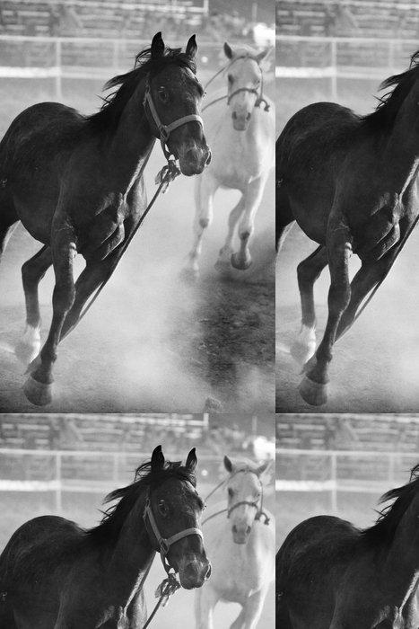 Tapeta Pixerstick Koně běží volně na rodeo, převeden s přídavkem obilí - Amerika