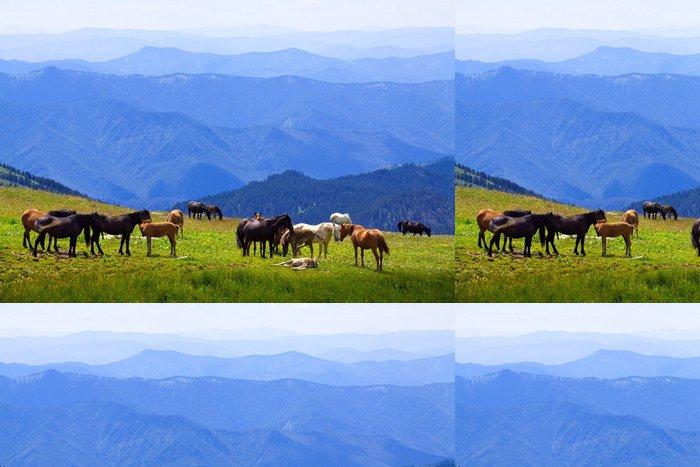 Tapeta Pixerstick Koně na horách louce - Savci