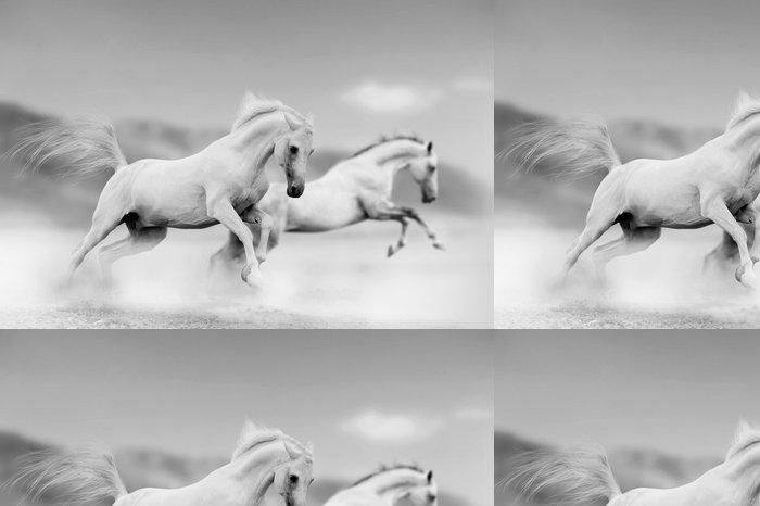 Tapeta Pixerstick Koně v poušti - Styly