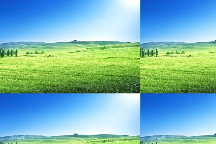 Tapeta Pixerstick Kopce v slunečný den Toskánsku, Itálie - Roční období
