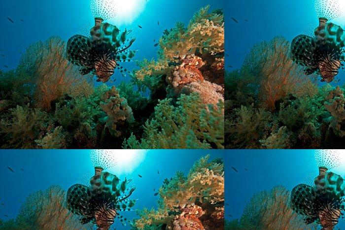 Tapeta Pixerstick Korál, moře a ryby - Criteo