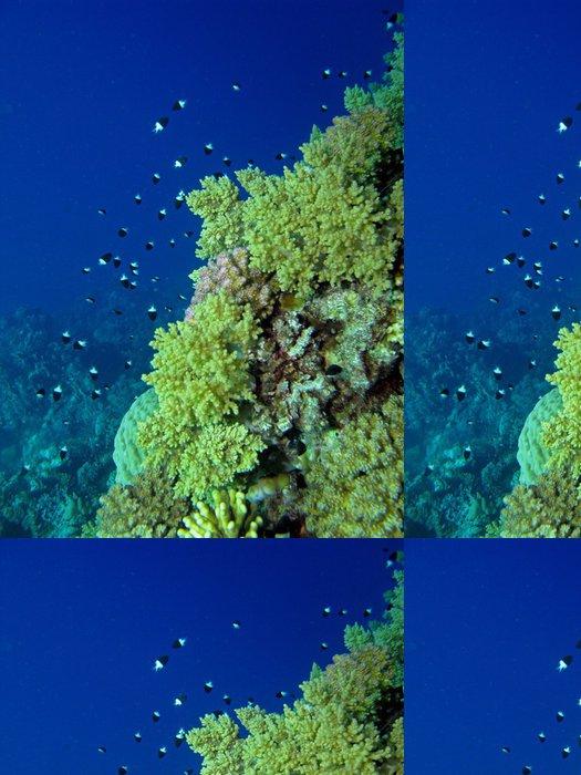 Tapeta Pixerstick Korálový útes scény - Květiny