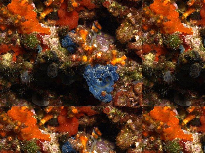Tapeta Pixerstick Korálový - Podvodní svět