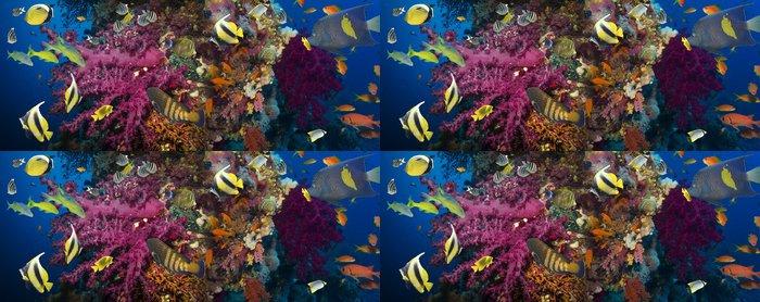 Tapeta Pixerstick Korály a ryby - Vodní a mořský život