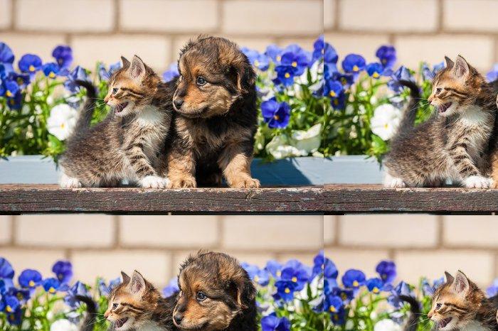 Tapeta Pixerstick Koťátko s štěně venku - Savci