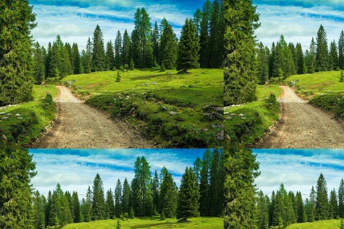 Tapeta Pixerstick Krajina Itálie, Dolomity - borový les prohlídka - Outdoorové sporty