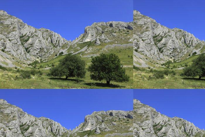 Tapeta Pixerstick Krajina v Trascau horách - Roční období