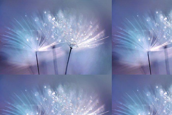 Vinylová Tapeta Krásná kapkami rosy na pampeliška semen makro. Krásné modré pozadí. Velký zlatý kapkami rosy na padáku pampeliška. Měkká snový platidlo umělecký obraz formuláře. - Rostliny a květiny