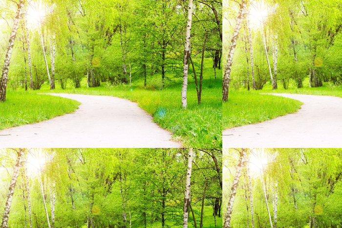 Tapeta Pixerstick Krásná příroda - Témata
