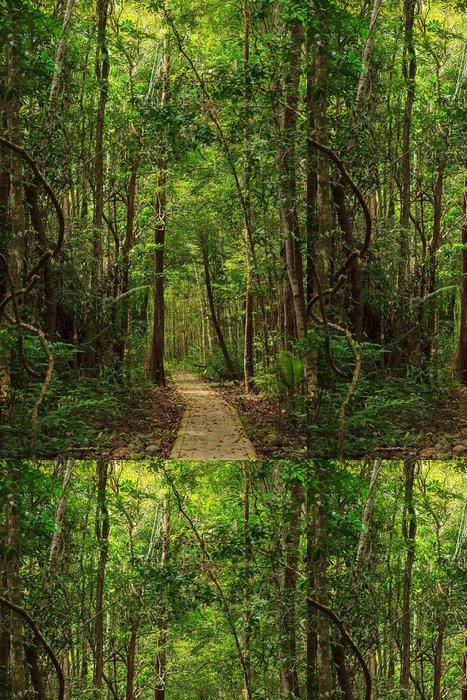 Tapeta Pixerstick Krásná stezka v džungli ostrova Tarutao - Prázdniny