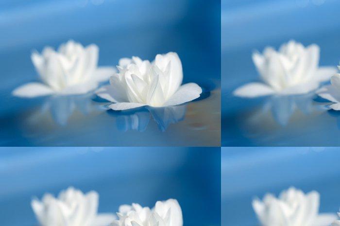 Tapeta Pixerstick Krásné bílé květy jasmínu Plovoucí na Blue Water - Květiny