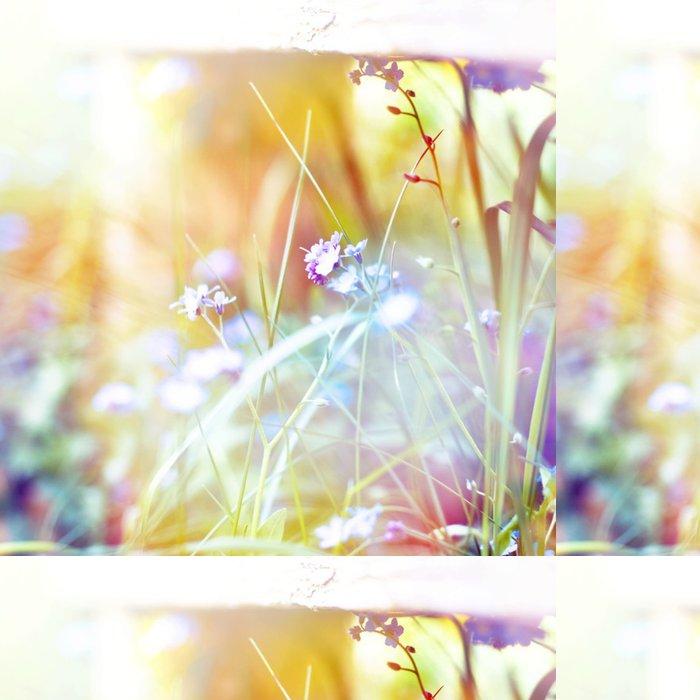 Tapeta Pixerstick Krásné květiny vyrobené s barevnými filtry - Styly