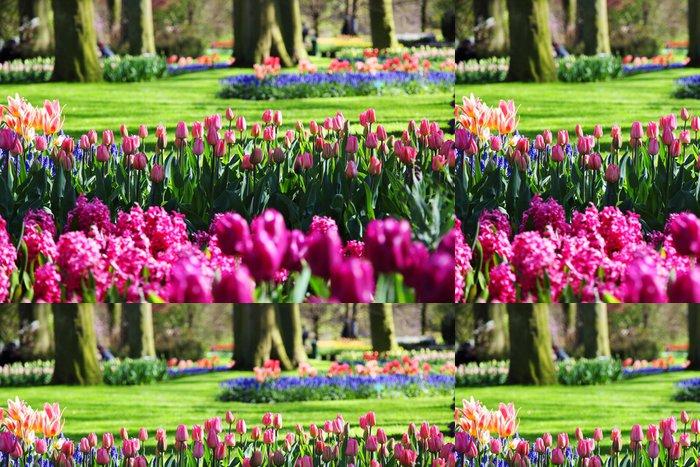 Tapeta Pixerstick Krásné kvetoucí jarní zahrady - Květiny