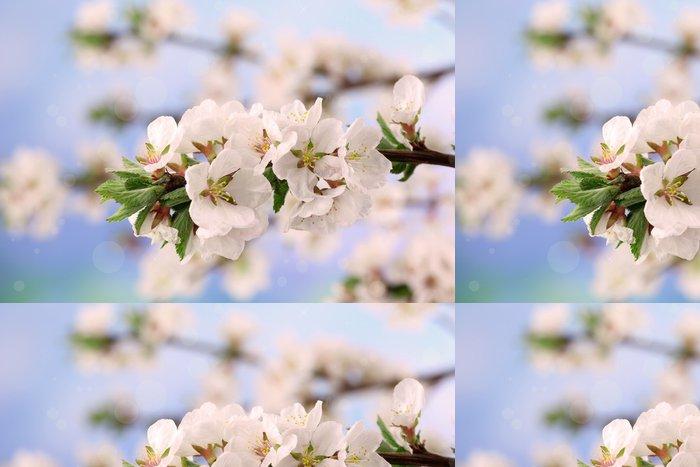 Tapeta Pixerstick Krásné kvetoucí větve, detailní, na světlém pozadí - Květiny
