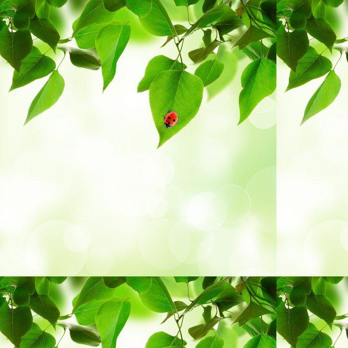 Tapeta Pixerstick Krásné listy na pozadí - Stromy