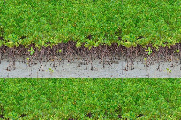 Tapeta Pixerstick Krásné mangrove plantáže na moři s kořeny ukazující - Roční období