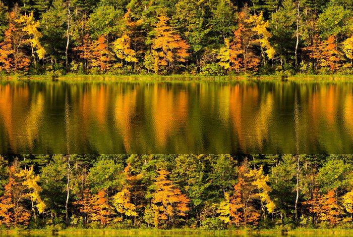 Tapeta Pixerstick Krásné odrazy od barevné listí na podzim. - Témata