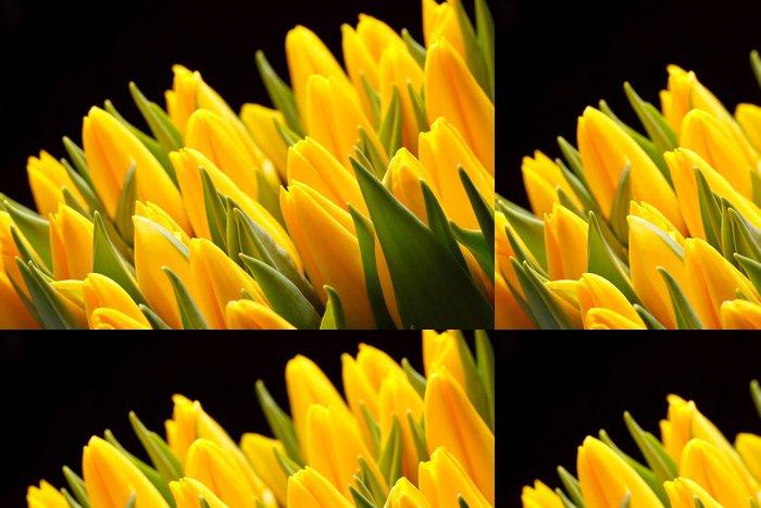 Tapeta Pixerstick Krásné tulipány - Témata