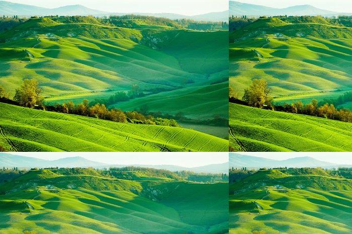 Vinylová Tapeta Krásné zelené kopce v Toskánsku, Itálie. - Toskánsko