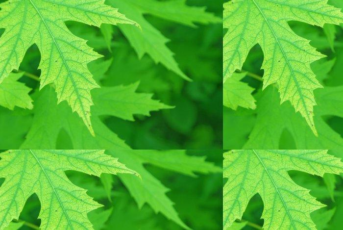 Tapeta Pixerstick Krásné zelené pozadí - Struktury