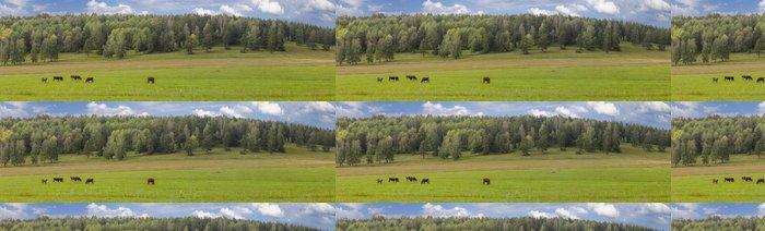 Tapeta Pixerstick Krávy na pastvině - Venkov