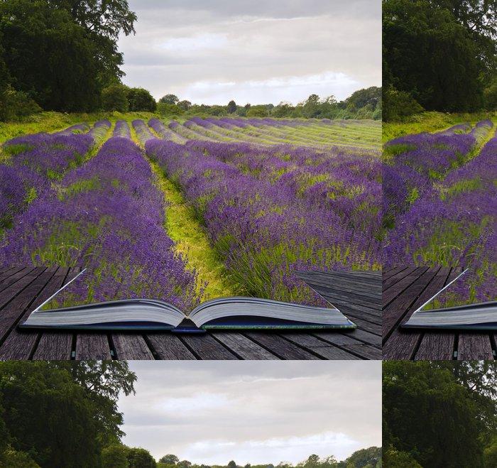 Tapeta Pixerstick Kreativní concecpt obraz levandulová pole krajiny vychází - Témata