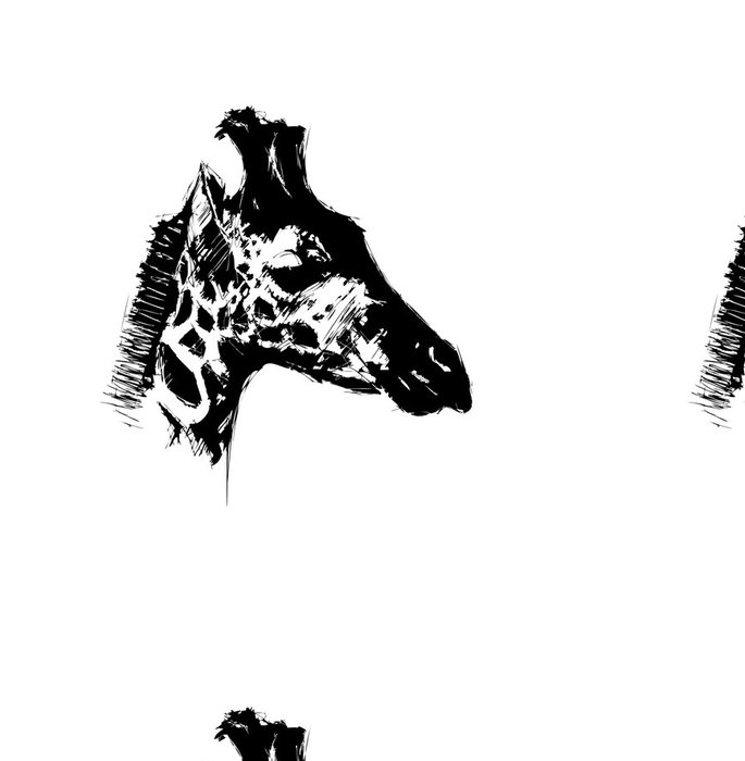 Tapeta Pixerstick Kreslení žirafy - Savci