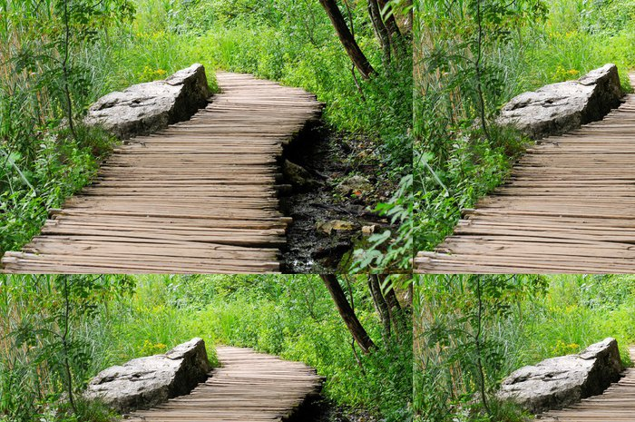 Tapeta Pixerstick Krok - Příroda a divočina