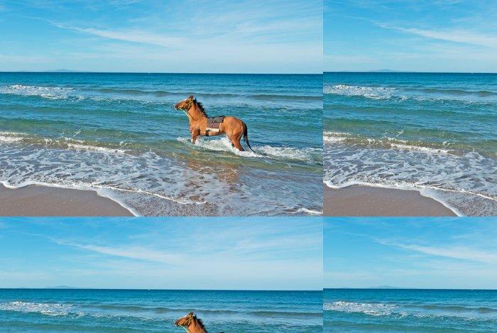 Tapeta Pixerstick Kůň v moři - Voda