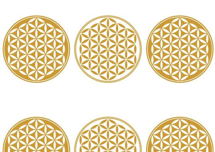 Tapeta Pixerstick Květ života - Protect ikona, Posvátná geometrie - Aplikované a přírodní vědy