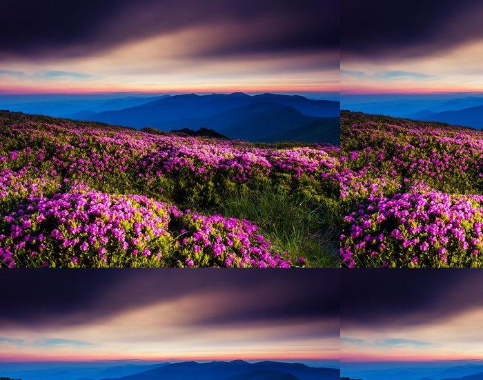 Tapeta Pixerstick Květ - Hory