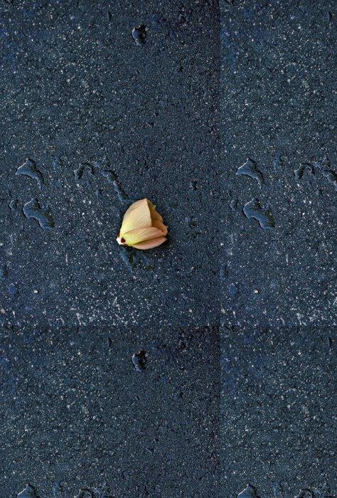 Vinylová Tapeta Květina na asfaltu ulice po dešti - Jiné pocity