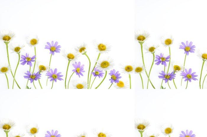 Tapeta Pixerstick Květina - Pozadí