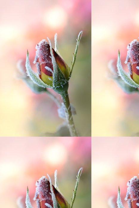 Tapeta Pixerstick Květiny 308 - Roční období
