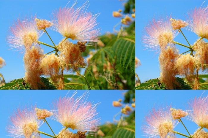 Tapeta Pixerstick Květiny na obloze - Rostliny