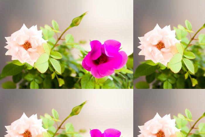 Tapeta Pixerstick Květiny - Květiny