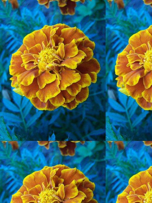Tapeta Pixerstick Kwiat - Rostliny
