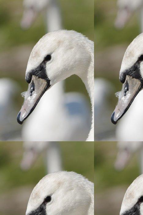 Tapeta Pixerstick Labu - Ptáci