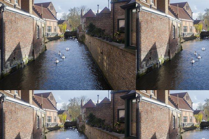 Tapeta Pixerstick Labutě na cestách, Bruggy, Belgie - Prázdniny